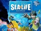 Sea Life Aquarium Jesolo